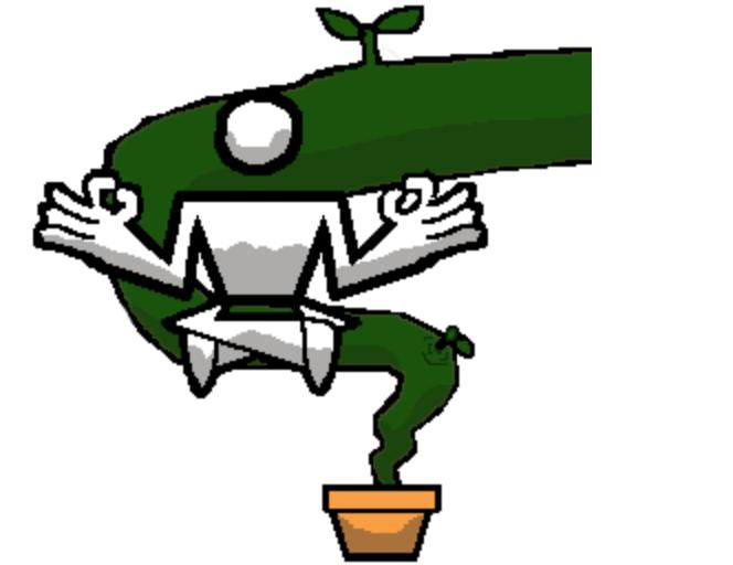 Garden Gurus Ltd