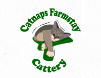 Catnaps Farmstay Cattery