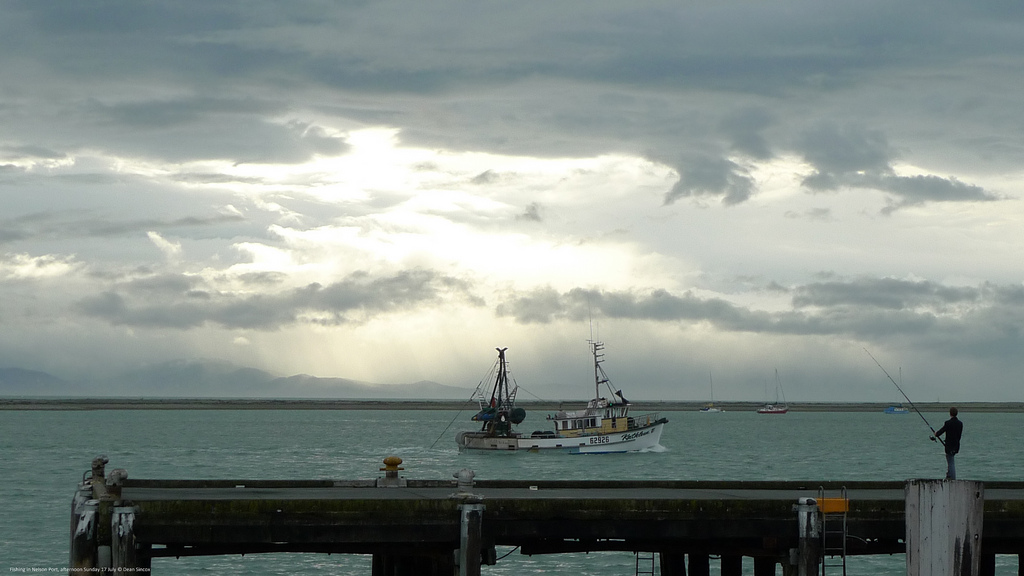 Fishing at Nelson Port