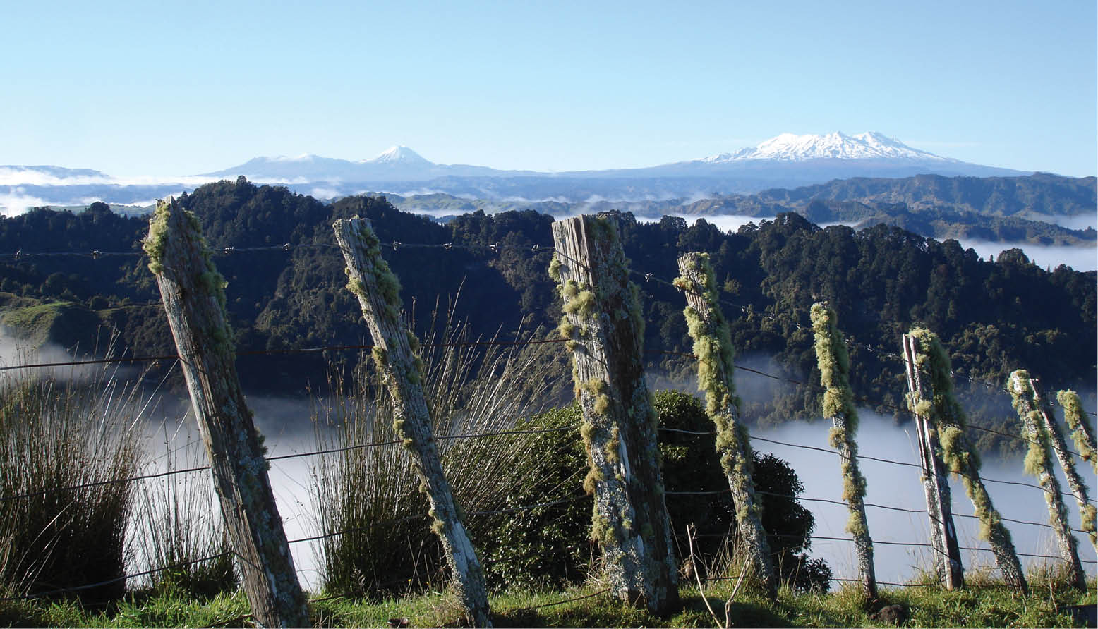 Ruapehu Geography and View