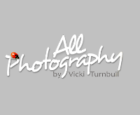 All Photography by Vicki Turnbull
