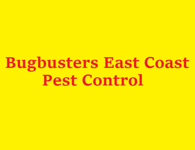 [Bugbusters East Coast Pest Control]