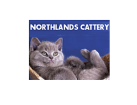 Northlands Cattery