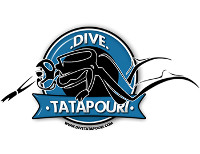 Dive Tatapouri