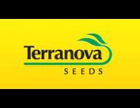 Terranova Seeds Limited