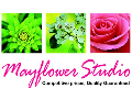 Mayflower Studio