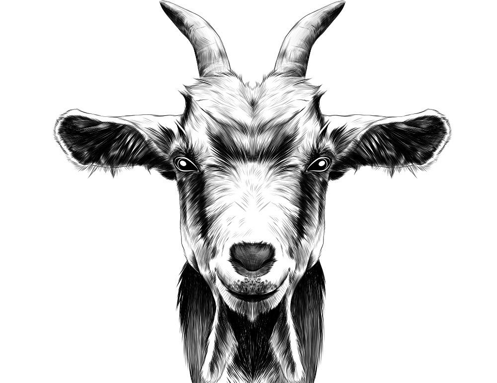 Scape Goats