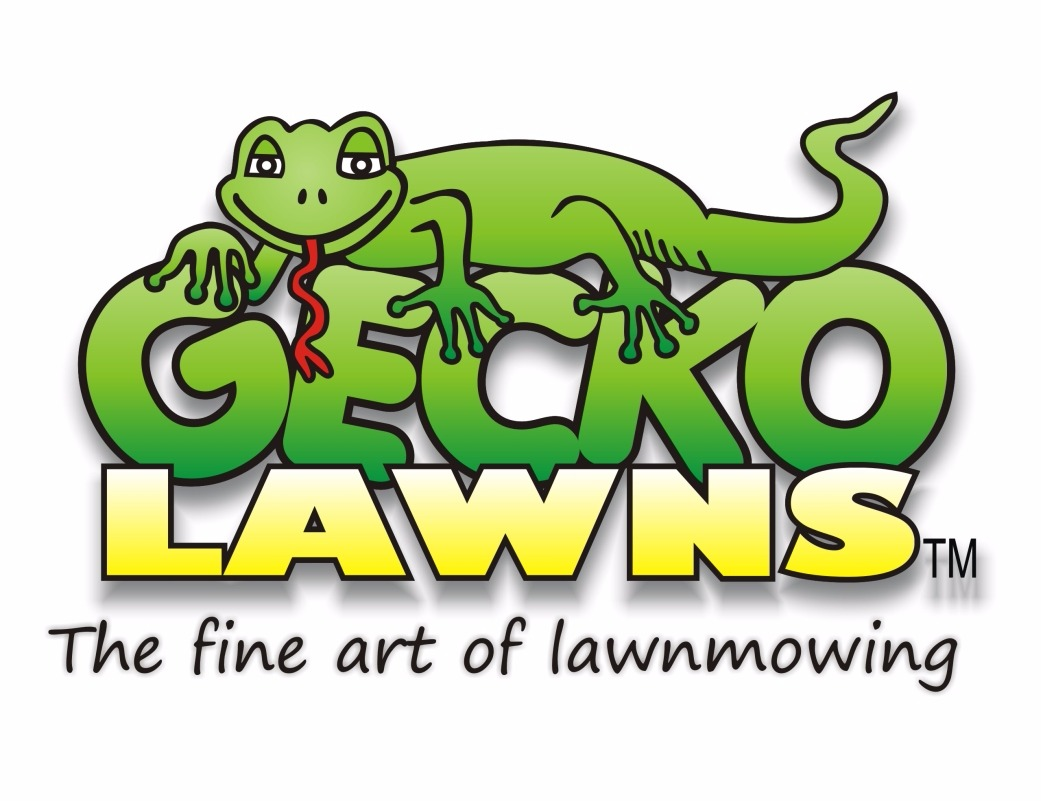 Gecko Lawns
